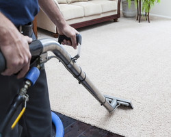 carpet shampooing service in chandigarh